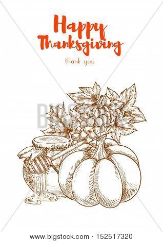 Thanksgiving vegetables harvest retro greeting card design. Autumn harvesting celebration food of pumpkin, honey jar, grapes bunch. Vector sketch elements for thanksgiving banners, posters