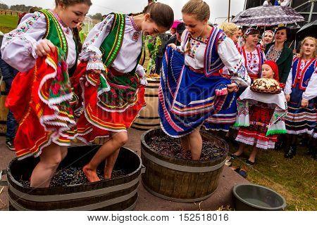Bobovische Ukraine - 2016 October 16: Girls in traditional costumes crushed underfoot grapes in a barrel during etnofestival Bobovischanske Grono 2016.