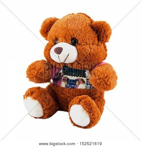 bear children's soft toy isolated on white background