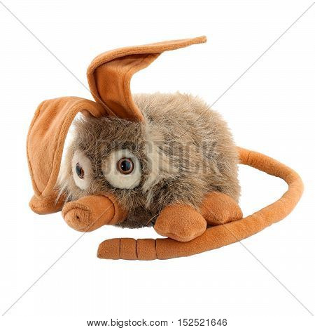 anteater children's soft toy isolated on white background
