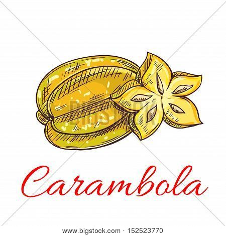 Tropical carambola fruit isolated sketch of exotic yellow starfruit with fresh juicy slice. Cocktail, vegetarian dessert menu, juice packaging design