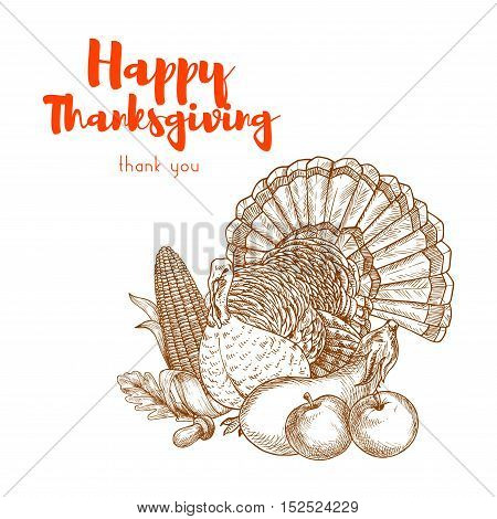 Thanksgiving traditional turkey for greeting card design. Vector sketch of turkey bird with vegetables, apples, corn and autumn leaves for thanksgiving holiday celebration banner, poster, placard, sticker