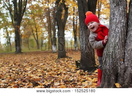 kid in autumn park hidden behind tree and smile