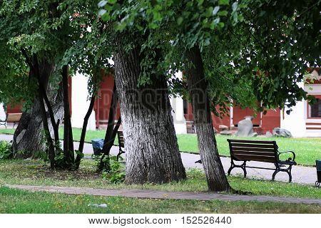 park with green trees and retro wroght bench in