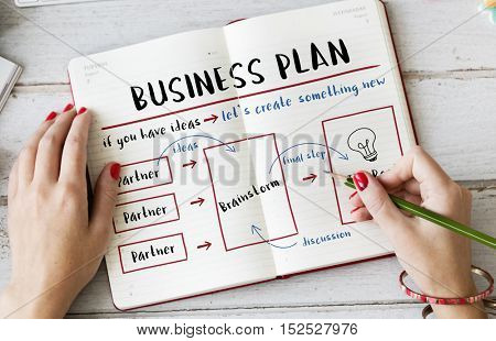 Business Plan Strategy Diagram Concept