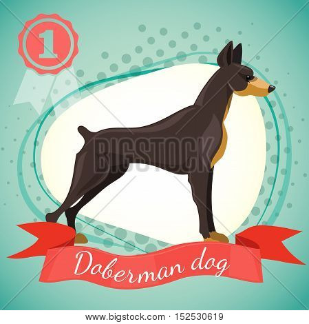 Vector illustration of doberman pinscher dog. Best in show dog champion. Half tone background with red ribbon and medal.