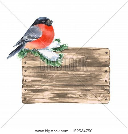 Wooden sign and bullfinch. Watercolor illustration, isolated on white