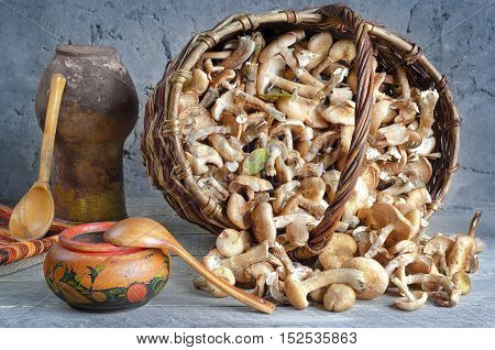 Raw fresh mushrooms in an old basket on a wooden surface and gray-blue background. Old jug, wooden bowl and spoon.