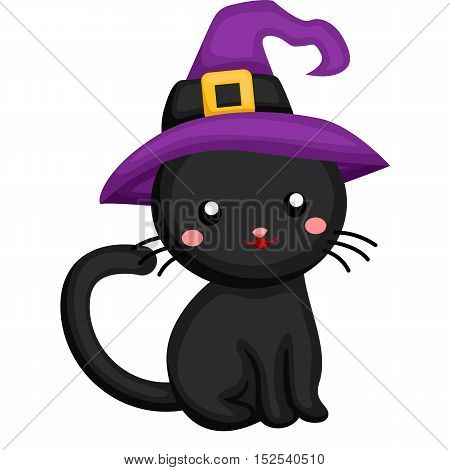 A little black cat wearing a witch hat