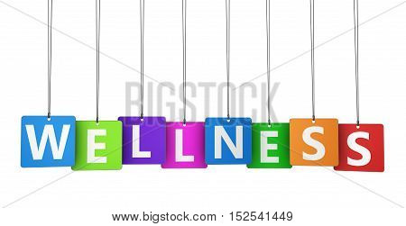 Wellness sign and word on colorful paper tags 3D illustration.