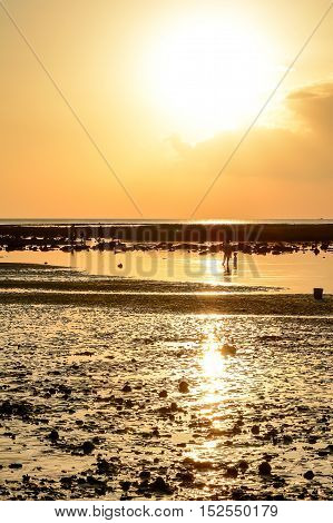 Golden sky reflecting off the sea and the beach. And people standing on the beach.