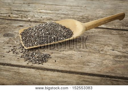 heap of chia seeds on small wooden shovel, on rustic wooden background