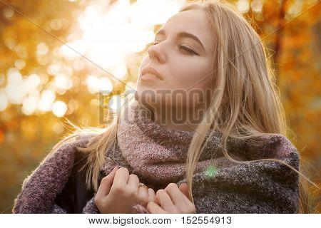 sensual beautiful woman in autumn sunlight, toned image