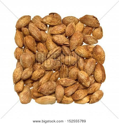 roasted almonds in studio white background with shell