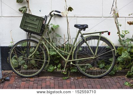 Green transportation bike with crate in Amsterdam