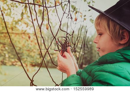 halloween concept- little boy with spider and web play at fall, kids trick or treating