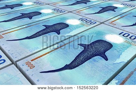 Maldivian rufiyaa bills stacks background. 3D illustration.