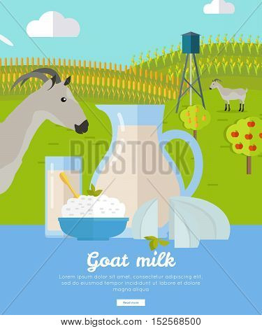 Goat milk. Milk farm concept banner vector flat design. Organic farming, traditional products. Clean naturally produced food. Glass of milk, cheese, butter on the background of farm and goat.