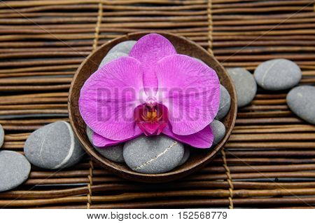 Red orchid with gray stones in bowl on mat,