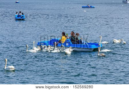 Lucerne, Switzerland - 11 May, 2015: swans following people in a boat on Lake Lucerne. Lake Lucerne (German: Vierwaldstattersee) is a lake in central Switzerland, the fourth largest one in the country.