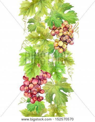 Repeating border stripe with grape and grape leaves. Watercolor frame