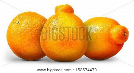 Group of oranges and mandarins isolated on white background.