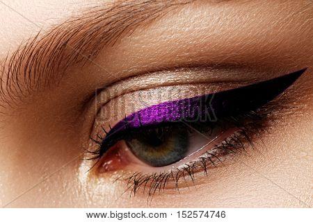 Elegance Close-up Of Beautiful Female Eye With Fashion Eye Shado