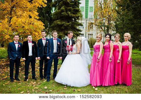 Stylish Groomsmen And Bridesmaids With Wedding Couple Background Yellow Trees