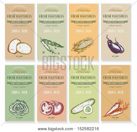 Vegetable seeds packets template. Vector hand drawn ink sketch vegetable banners set. Eco vintage foods.