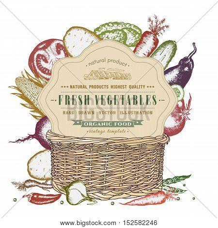 Fresh vegetables in basket isolated on white vintage eco food design vector illustration