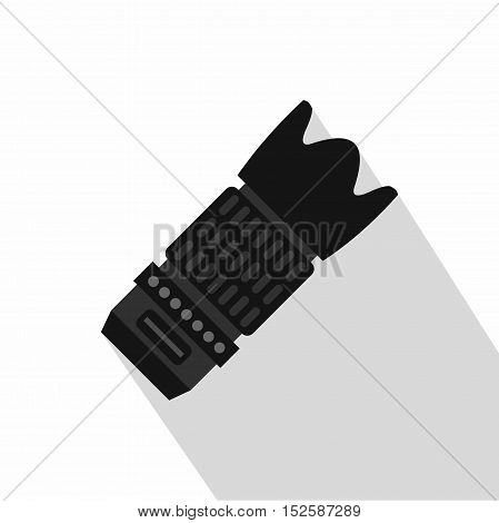Professional zoom lens icon. Flat illustration of professional zoom lens vector icon for web isolated on white background