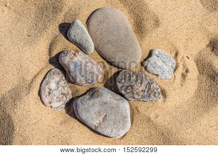 pebbles on the sand of various shapes and colors