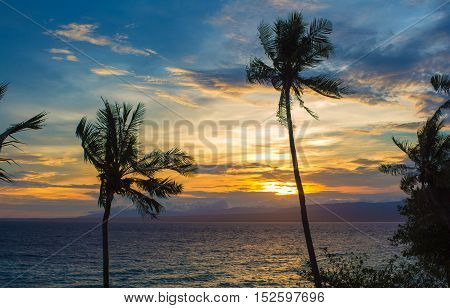 Silhouette of palm trees during sunset. Sea view with colorful sunset sky orange sun blue clouds. Peaceful landscape of paradise island. Tropical nature by evening. Travel card or banner template