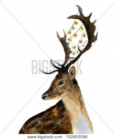 Watercolor deer with garland of lights on horns isolated on white background. Christmas wild animal illustration for design, print or background.
