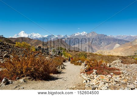 Trail leading towards Muktinath, Daulagiri rising in the back. Sacred place for Hindus and Buddhists.