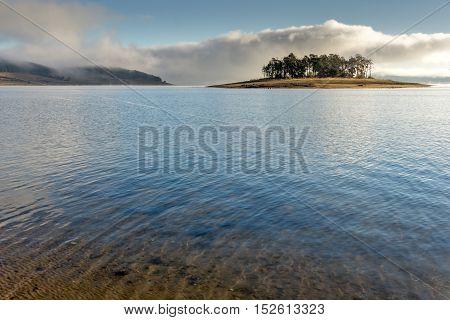 Island with pines in Batak Reservoir, Pazardzhik Region, Bulgaria