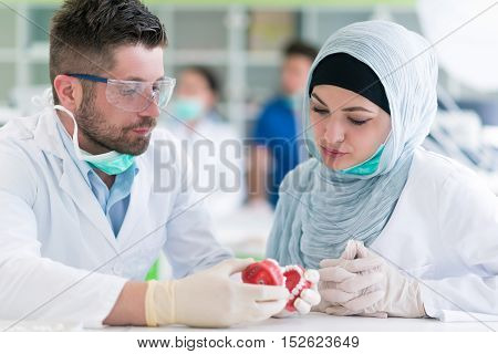 Dental Prosthesis, Dentures, Prosthetics Work. Arab Students With Hijab While Working On The Denture