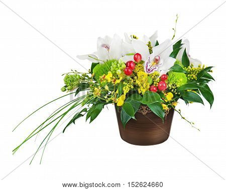 Bouquet from orchids in dark vase isolated on white background. Closeup.
