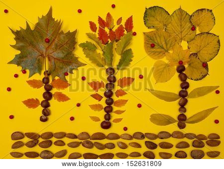 Autumn arrangement of fallen leaves nuts and berries yellow background fall