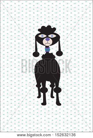 Poodle.Illustration of a poodle.Dog. Funny dog. Funny poodle. For children. Children's background. A funny background. The background for the text. Funny animals.Kids background. Funny doggie.