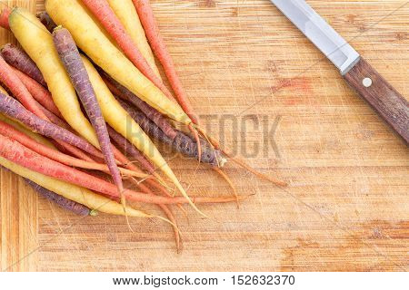 Bunch Of Assorted Colorful Fresh Carrots