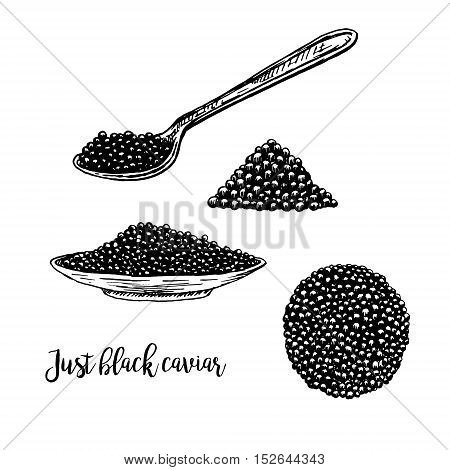 Hand drawn set of plate with black caviar. Retro sketches isolated. Vintage hypster collection. Doodle line graphic design. Black and white drawing black caviar and spoon. Vector illustration.