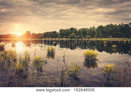Vintage Landscape Of  Beautiful Lake
