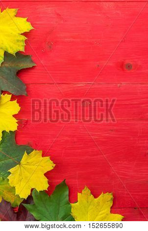 Frame Of Colorful Autumn Leaves In Yellow And Green