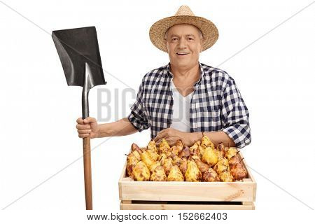 Mature farmer posing with a shovel and a crate full of pears isolated on white background