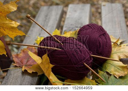 Yarn and knitting needles are on the bench in the park in autumn. Close-up.