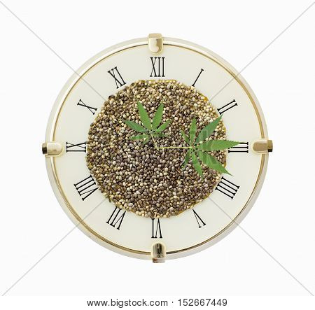 Clock with hemp seeds and hemp leaf arrows isolated on white background