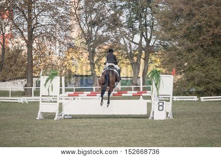 Gomel, Belarus - October 16, 2016: Olympics For Nordic Combined. Jumping Up To 115 Cm.