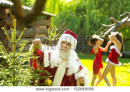 Serious santa claus man in new year red costume and pretty girls in sexy dresses decorate Christmas tree on natural background
