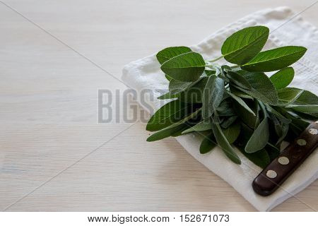 A Bunch Of Fresh Sage On Light Wooden Table. Selective Focus